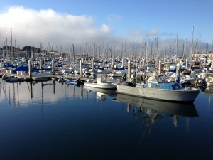 Marina near Carmel. The beautiful settings had me snapping photos, reviewing them and proclaiming myself to be a regular photographic Thomas Kinkade.