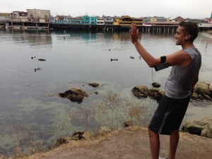 We were inordinately excited to see the otters, seals and sea lions that populate Monterey. This is Deepak giving the seals a royal wave. Not to be confused with ocean wave.