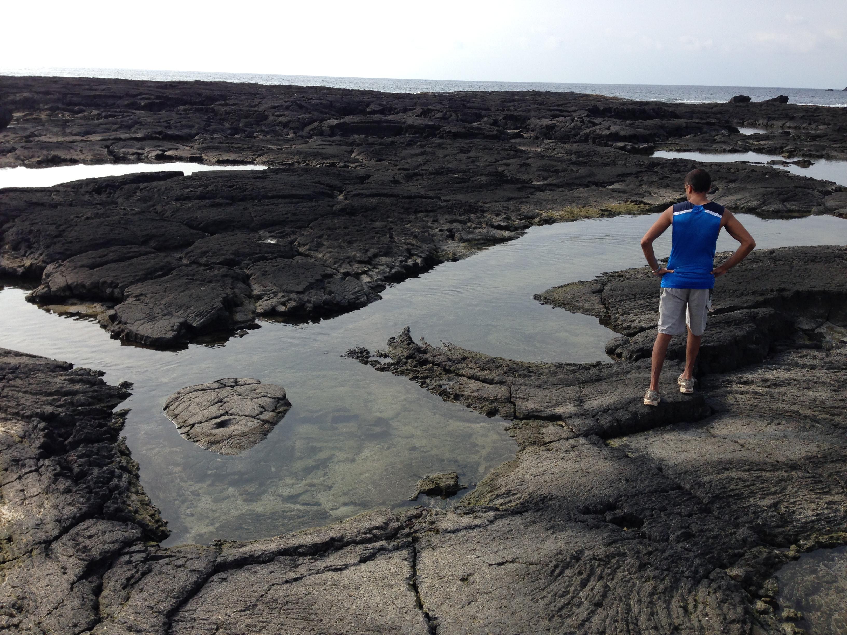 Considering the marine biology.