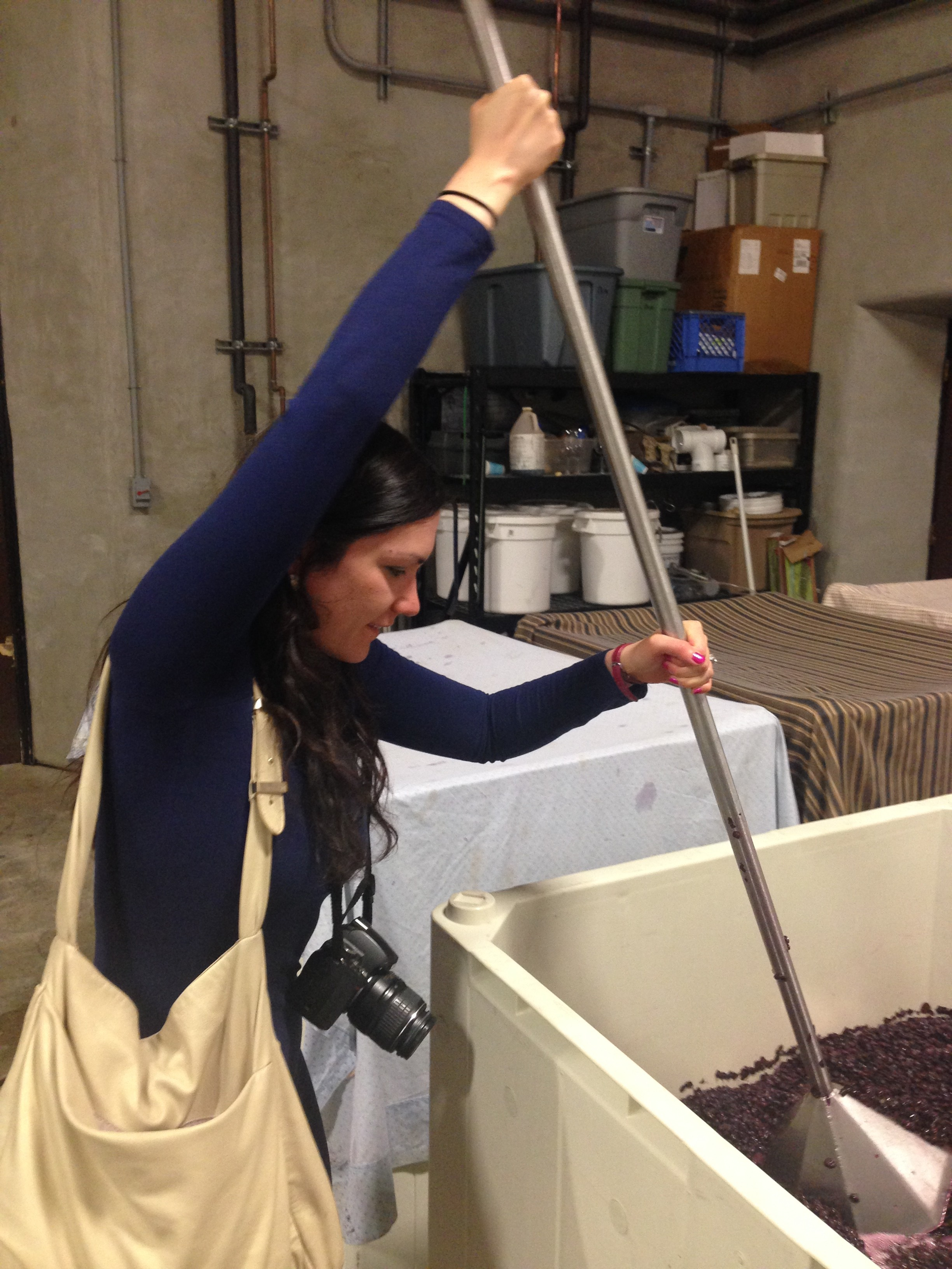 """I got to take a turn with the """"punch down"""" step of winemaking! Will they be putting my name and a little bio of me on the bottle of this one??"""